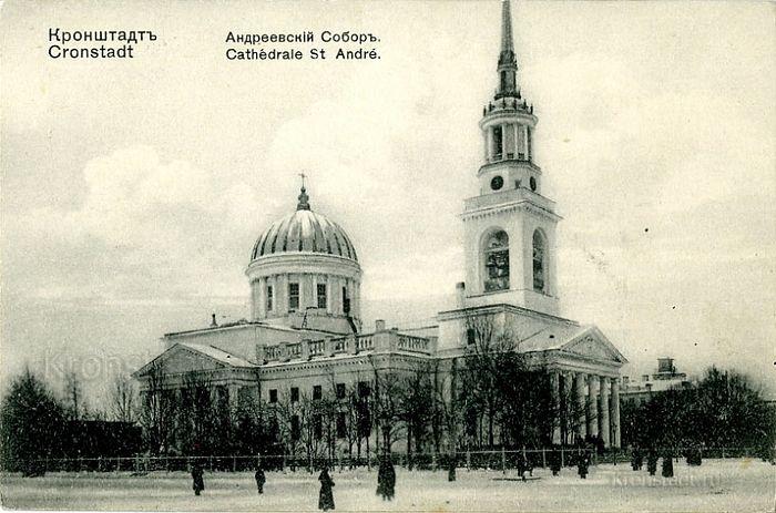 Фото: aquaviva.ru